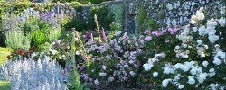 Ardchattan Priory - a lovely garden near Oban