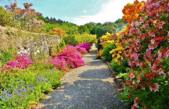 Ardmaddy Castle Garden