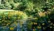 arduaine-garden.jpg