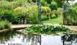 barnsley-house-garden.jpg