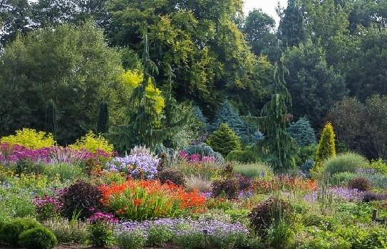 Bressingham Garden Norfolk