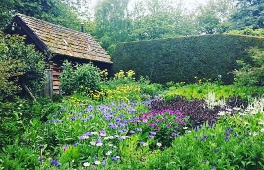 Bide-a-Wee Cottage Garden