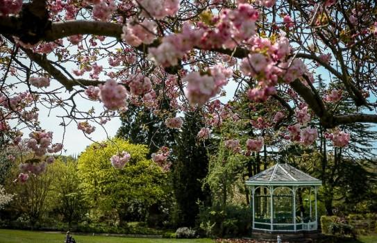 Birmingham Botanical Garden