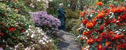 Gardens in Perthshire