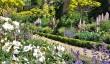 buscot-park-garden-3.jpg