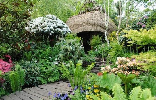 Chelsea Flower Show - looking back at Chris Beardshaw's great Furzey Garden