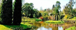 The beautiful Cholmondeley Castle Gardens