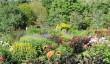 cornwall-gardens.jpg