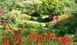 dartington_hall_gardens.jpg