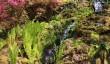 endsleigh-garden.jpg