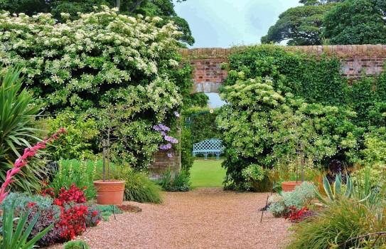 Felbrigg Hall Garden
