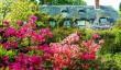 furzey_garden.jpg