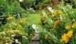 garden-house-in-devon.jpg