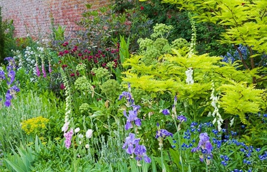 Gardens in Denbighshire