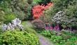 gardens-in-northumberland.jpg