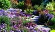 gardens-near-malvern.jpg