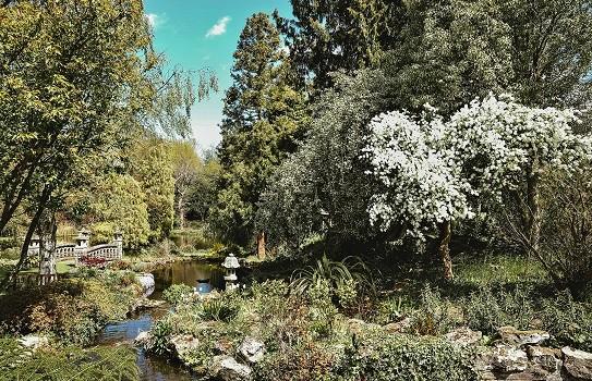 Mount Ephraim Gardens a gardens near me