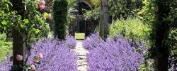 Gardens to visit Cotswolds - Upton Wold