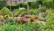 glamis-castle-flowers.jpg