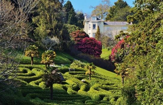 Glendurgan Garden a National Trust Garden in Cornwall