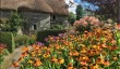 great-british-gardens.jpg