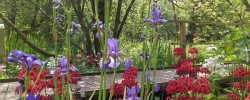 Great British Gardens - Fairhaven Woodland Garden
