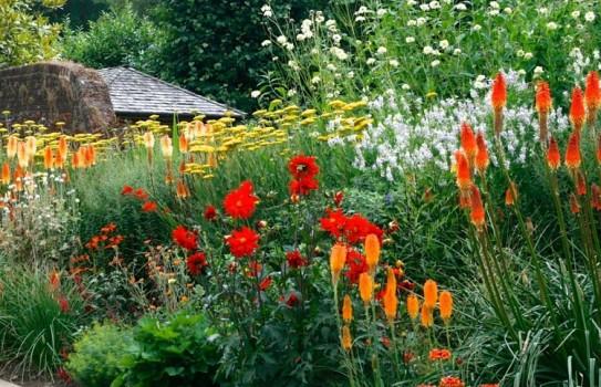 Great British Gardens - Great Comp