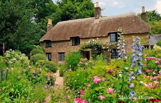 Thomas Hardy's Cottage Garden