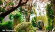 hepworth-scupture-garden.jpg