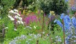 hergest-croft-herbaceous-border.jpg