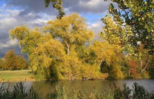 The lake at Kensington Gardens