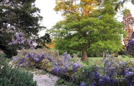 Kingston Bagpuize House Garden