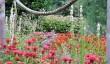 leith-hall-gardens.jpg