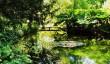 longstock-water-gardens.jpg