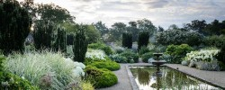 Loseley Park - The White Garden