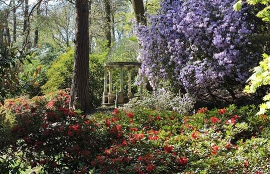 Lydney Park Spring Garden