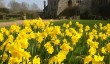 michelham-priory-garden.jpg