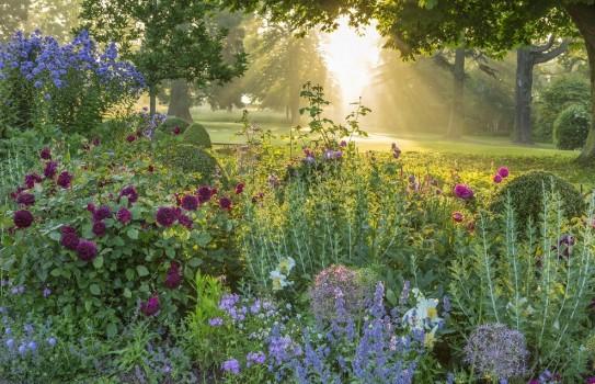 Morton Hall Garden