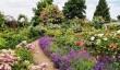 mount-ephraim-gardens.jpg