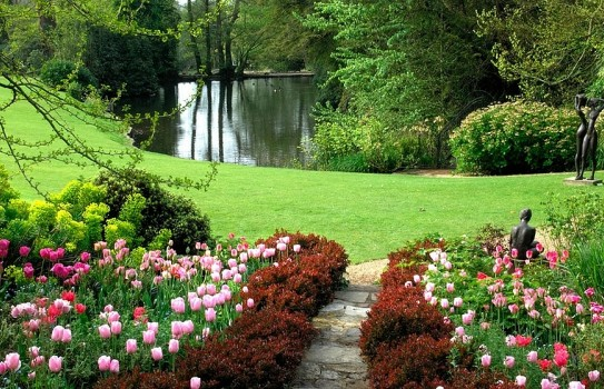 Pretty pink tulips leading you down to the lake at Parham House Gardens