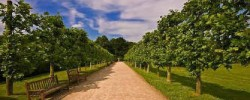 Rufford Country Park