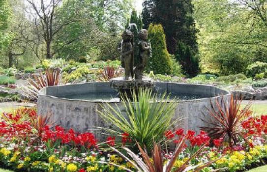 The Pool at Singleton Botanic Garden
