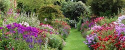 Stone House Cottage Garden
