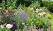 tintinhull-gardens.jpg