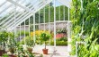 west-dean-garden-greenhouse.jpg