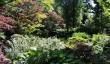 winterbourne-house-garden.jpg
