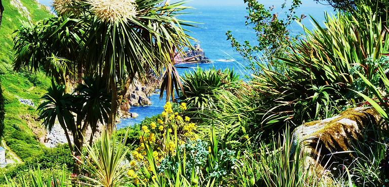 Coastal gardens great british gardens for 1000 designs for the garden and where to find them